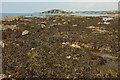 SX6543 : Wave-cut platform near Long Stone by Derek Harper