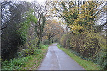 SU5901 : The Old railway line by N Chadwick