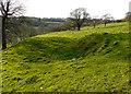 TR2043 : Meadow below Winterdown Farm by John Baker