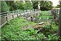 SU8743 : Twin bridges at Tilford by Derek Harper