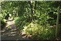 SU8745 : Bridleway to Waverley Cottages by Derek Harper