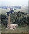 SZ5379 : Track to Newbarn Farm, Stenbury Down by Alan Reid