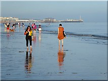 TQ2804 : Hove Beach by Simon Carey