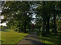 SE2736 : Path into Beckett Park by Stephen Craven