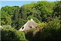 SX8969 : Wren Cottage by Derek Harper