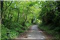 SD9151 : Pennine Way below Netcliffe Hill by Chris Heaton