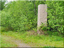 SD7705 : Rückriem's Untitled Stones at Outwood Country Park by David Dixon