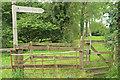 ST3605 : Jubilee Trail near Forde Abbey by Derek Harper