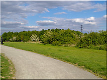 TQ5886 : Path near Thames Chase Forest Centre (Broadfields) by Roger Jones