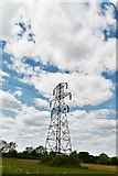 TM2768 : Brundish: Pylon by Michael Garlick