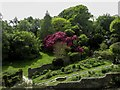 SX9050 : The Rill Garden at Coleton Fishacre by Steve Daniels