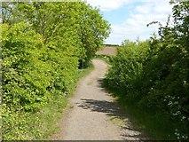 SK6736 : Farm track near Foss Bridge by Alan Murray-Rust