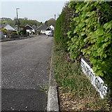 SZ0796 : Northbourne: Ferncroft Gardens by Chris Downer