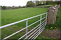 SE0088 : Field gateway on NE side of A684 NW of Aysgarth by Roger Templeman