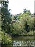 TQ2686 : Hampstead Heath : Vale of Health by Julian Osley