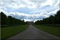 SE5158 : Beningbrough Hall driveway by DS Pugh