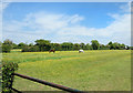 SP5516 : Ridge & Furrow along Mansmoor Road by Des Blenkinsopp