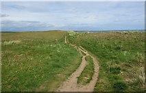 NO5000 : Fife Coastal Path by Bill Kasman