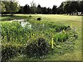 TF4316 : Water hazard on the 18th hole - Tydd St Giles Golf Course by Richard Humphrey