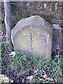 SE1502 : Old Boundary Marker by D Garside