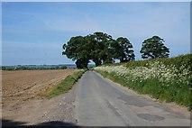 SE7875 : Ryton Rigg Road towards Great Habton by Ian S