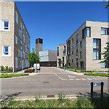 TL4259 : Eddington: Burkitt Lane by John Sutton