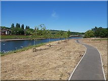 SX9192 : Path in unfinished landscaping, by River Exe, Bonhay Road, Exeter by David Smith