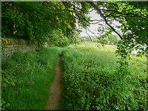 SE0027 : Wadsworth Footpath 76, Link 5, Chiserley by Humphrey Bolton