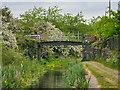 SD7909 : Manchester, Bolton and Bury Canal, Benny's Bridge by David Dixon