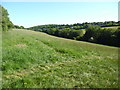 SP9505 : View of sloping field from Hawridge by David Hillas
