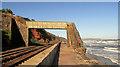 SX9777 : Footbridge, Dawlish by Derek Harper