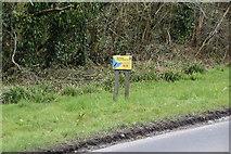 TQ6039 : Roadside Nature Reserve, Halls Hole Rd by N Chadwick