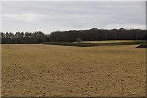 TQ6138 : Barren field by N Chadwick