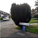 SZ0795 : Ensbury Park: Greaves Close by Chris Downer