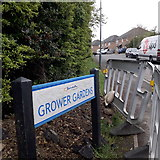 SZ0695 : West Howe: Grower Gardens by Chris Downer