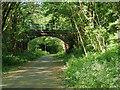 SD7910 : Bridge over Daisyfield Greenway by David Dixon