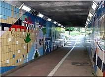 TG2208 : To Chapelfield Gardens through the underpass by Evelyn Simak