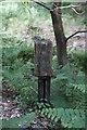 SO6311 : Railway milepost by John Winder