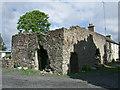 N7927 : Castles of Leinster: Blackwood, Kildare (1) by Garry Dickinson