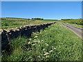 SE5186 : Wethercote Lane by Mick Garratt