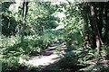 SO6113 : Site of Serridge Junction by John Winder