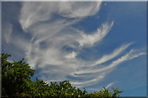 ST8180 : Cloud Formation, Acton Turville, Gloucestershire 2020 by Ray Bird
