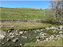 NY7346 : The River Nent below Newshield Moss by Mike Quinn