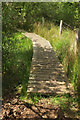 SX7477 : Path to Becka Brook by Derek Harper