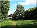SE2535 : Green space behind Broadlea Terrace by Stephen Craven