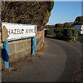 SZ0694 : Ensbury Park: Hazell Avenue by Chris Downer