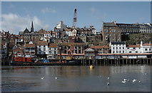 NZ8911 : The inner harbour, Whitby by habiloid