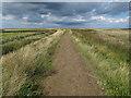 TG0444 : Path around Blakeney Fresh Marshes by Hugh Venables