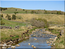 NY7346 : The River Nent below Far Hilltop (3) by Mike Quinn