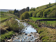 NY7346 : The River Nent downstream of Blagill Bridge by Mike Quinn